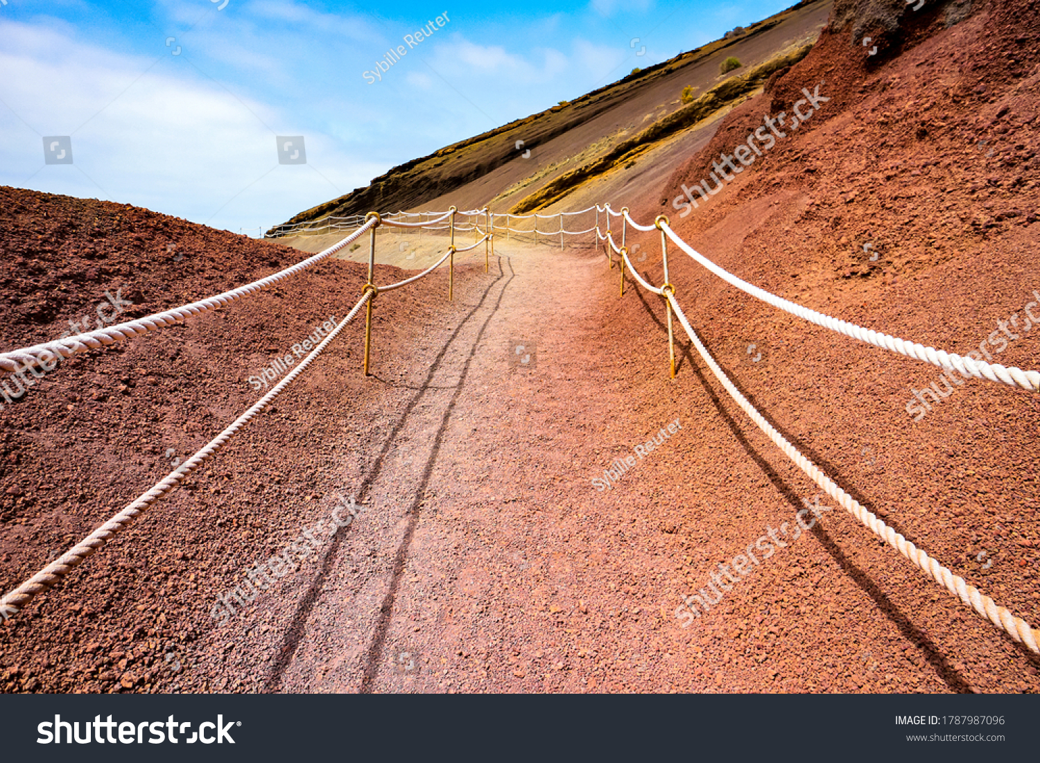 stock-photo-lonely-footpath-through-a-st