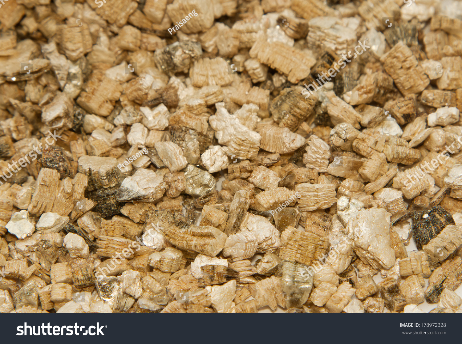 Vermiculite Used Potting Plants Stock Photo (Edit Now) 178972328 ...