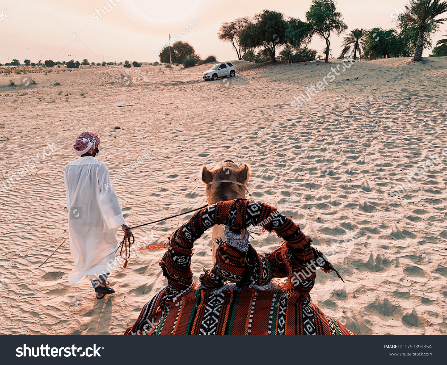 stock-photo-bedouin-guiding-camel-using-
