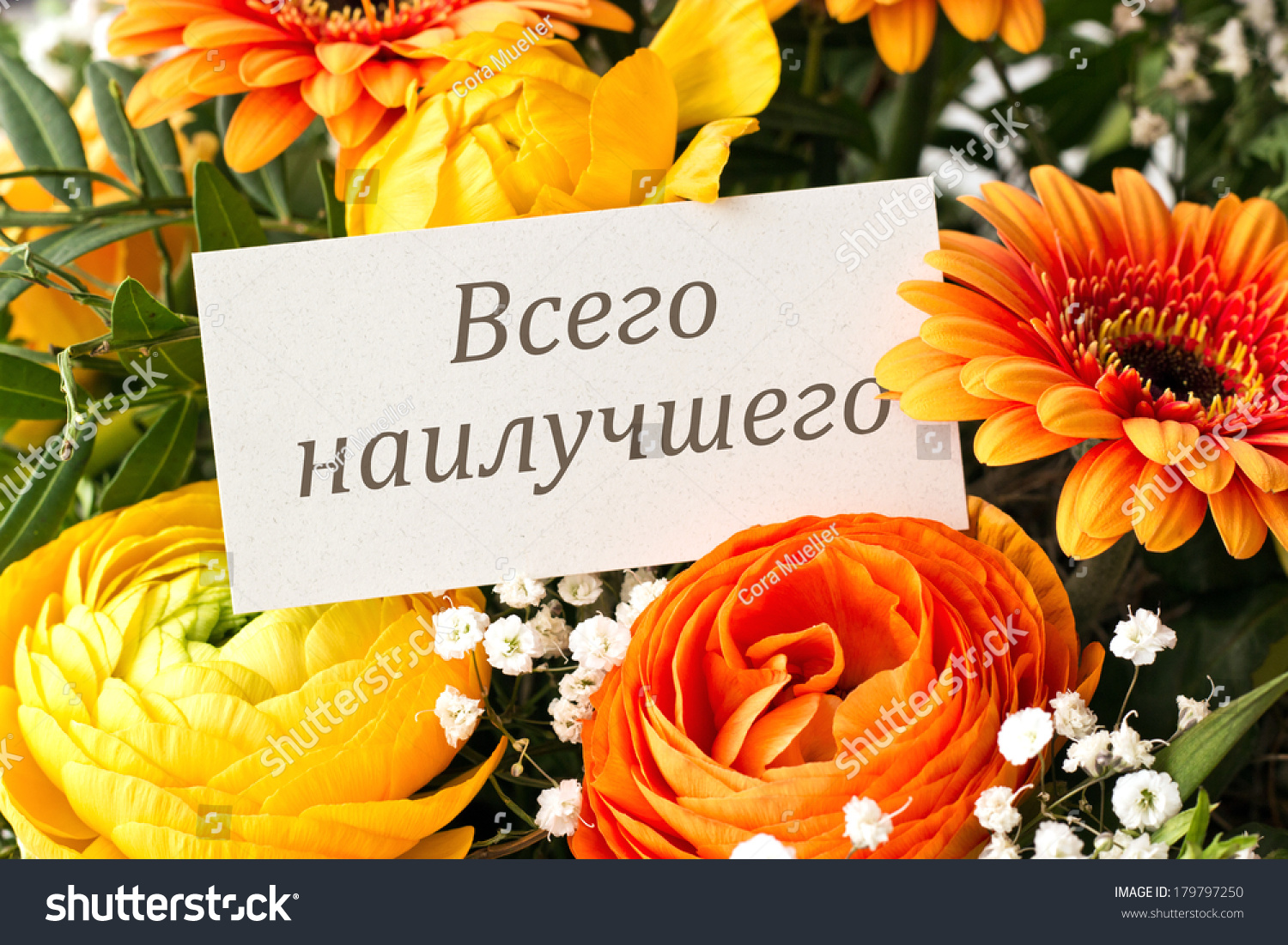 Bouquet Roses Gerbera Anemones Birthday Cardhappy Photo – Birthday Greetings in Russian