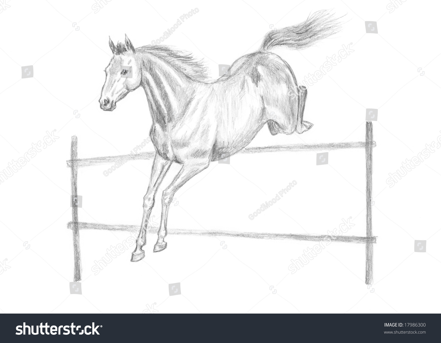Jumping Horse Pencil Drawing Handdrawn Stock Illustration 17986300 How To  Draw A Leaping Horse Solution For