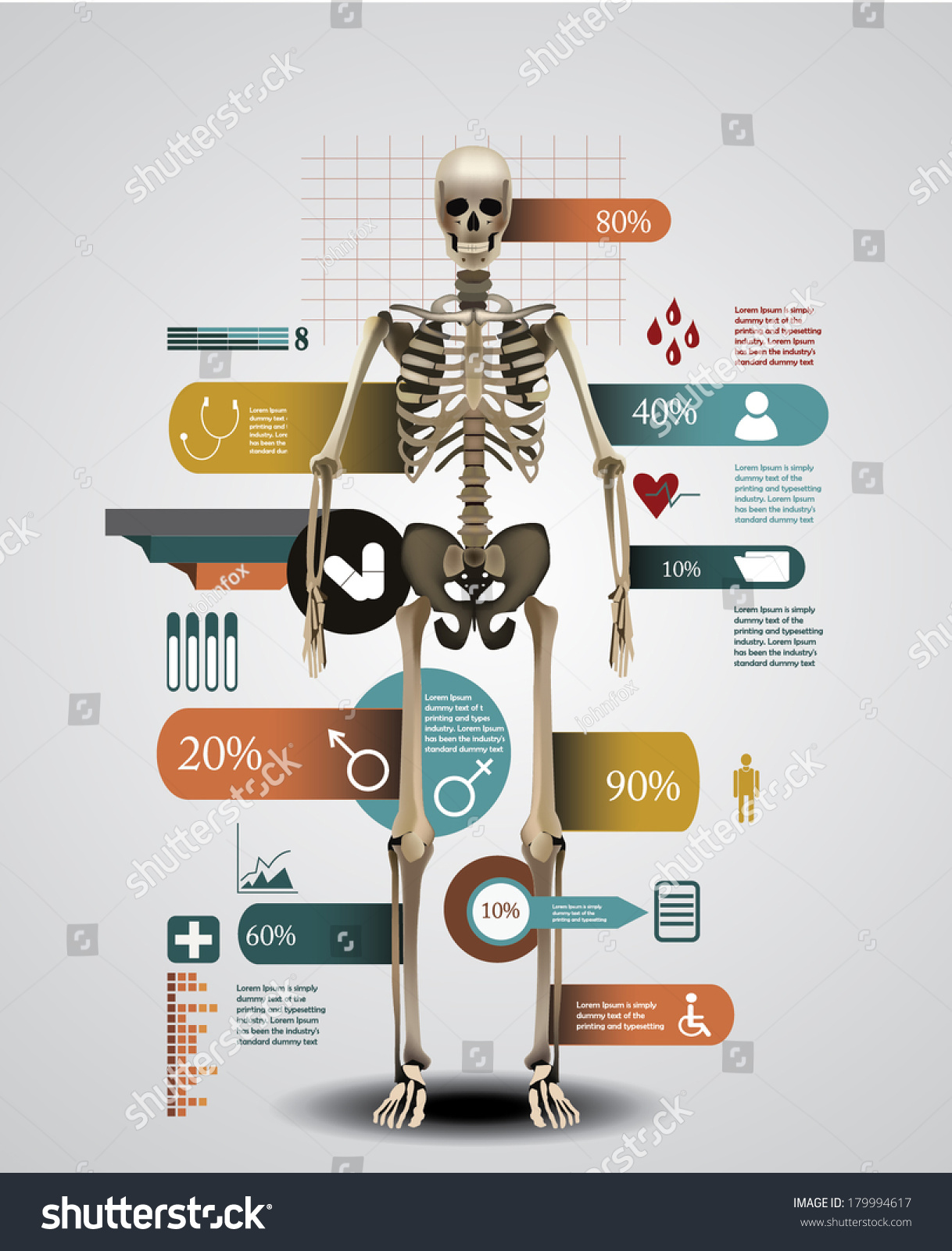 Medical Infographic Template Realistic Human Skeleton Stock Vector ...