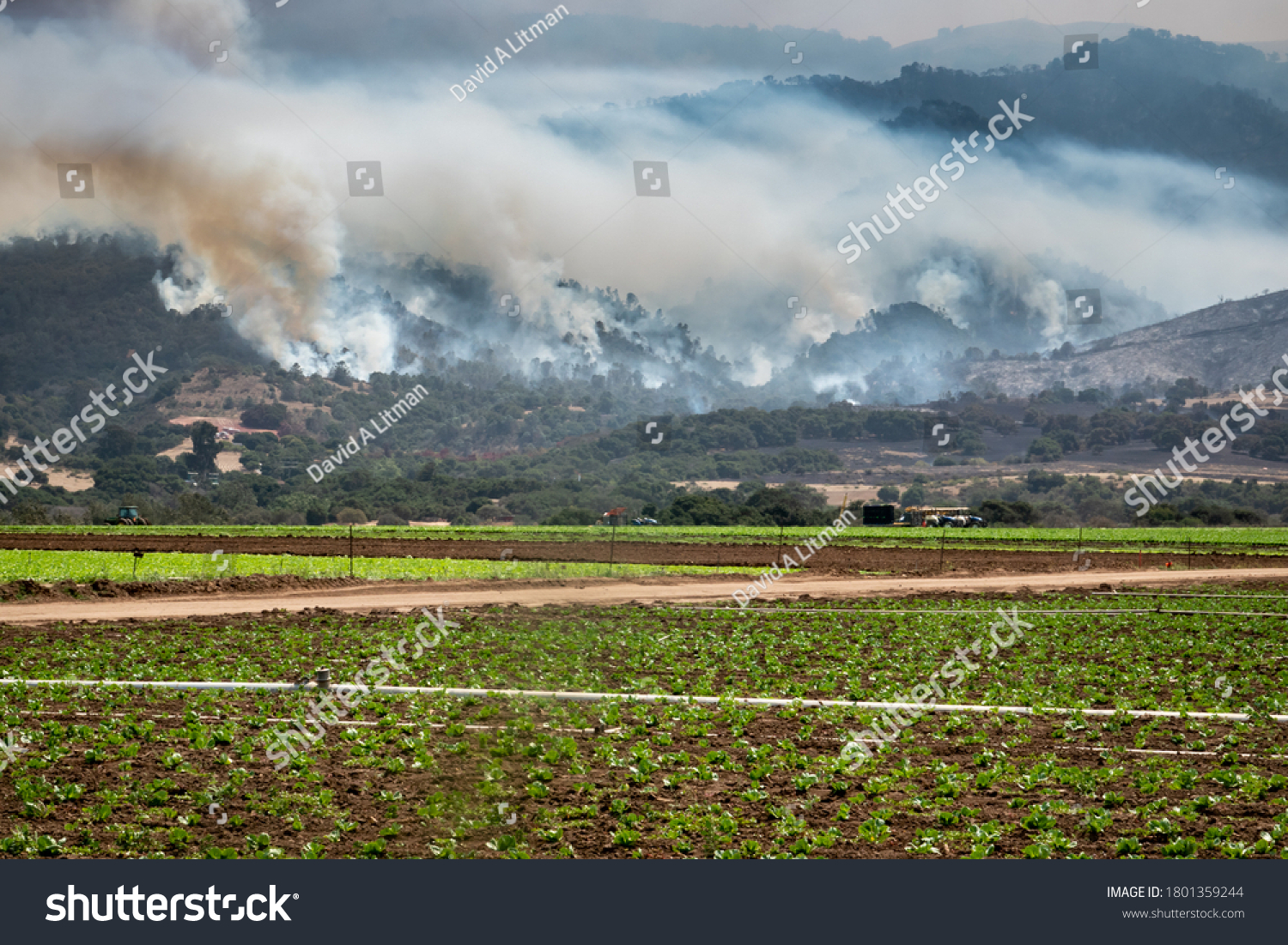 "The California ""River Fire"" in rages through the hills of Salinas, in Monterey County, with agricultural fields seen in the foreground."