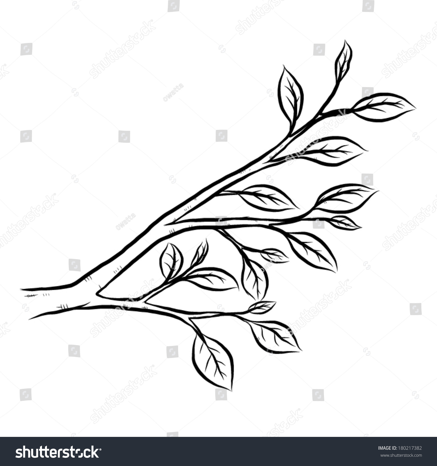 Branch Leaves Cartoon Vector Illustration Black Stock ...