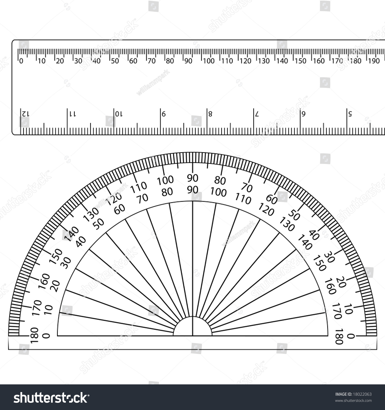 worksheet A Protractor protractor ruler stock vector 18022063 shutterstock a and ruler