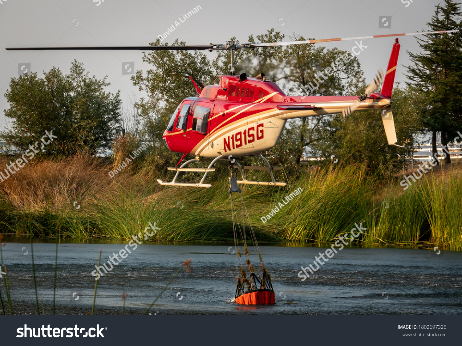 """Salinas, California - August 17, 2020:  A Cal Fire helicopter pilot collects a bucket of water from a pond to douse the """"River Fire"""" in the hills Monterey County of the central coast."""