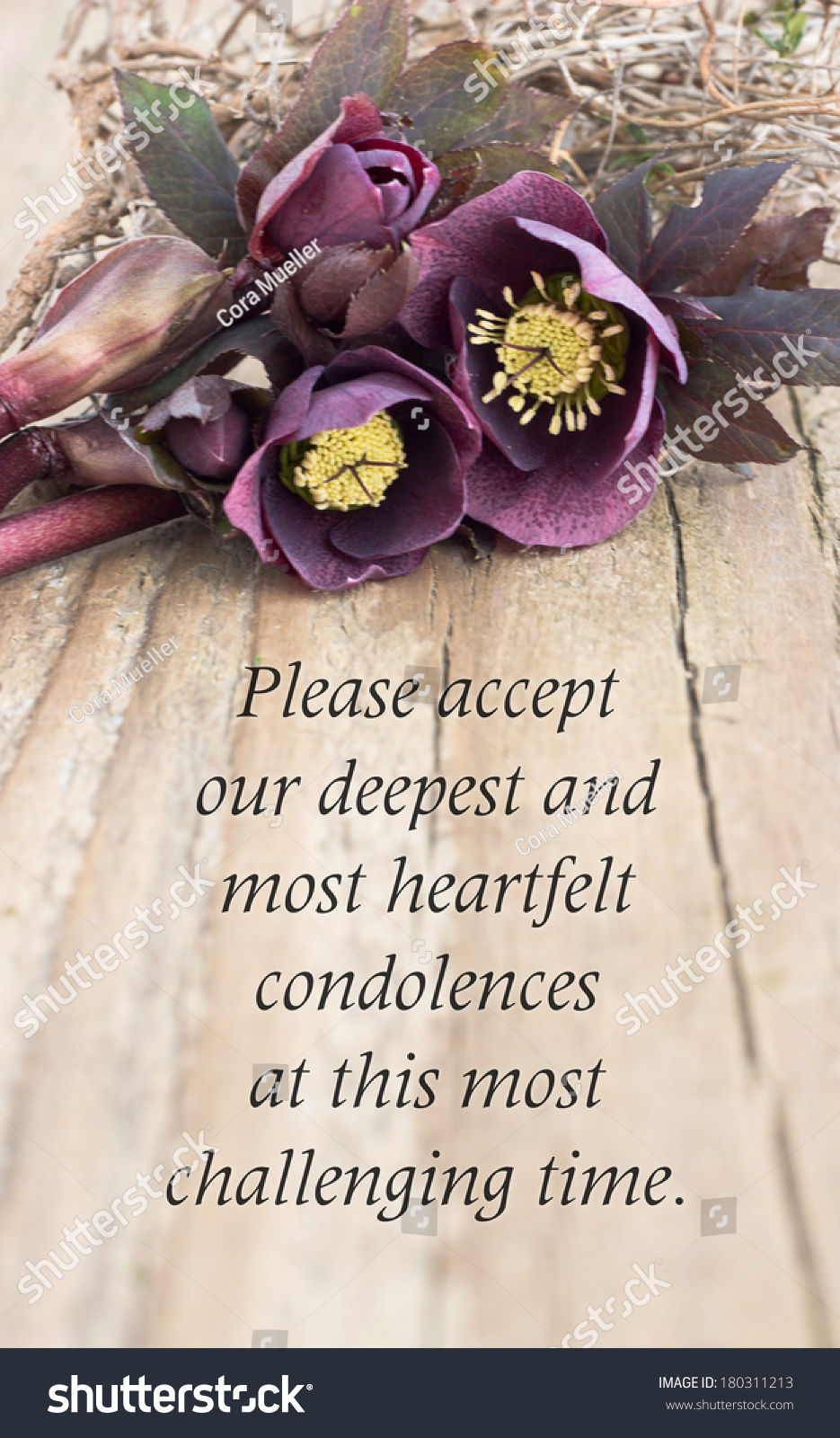 condolence card  with dark christroses/please accept our deepest and most heartfelt condolences at this most challenging time/english