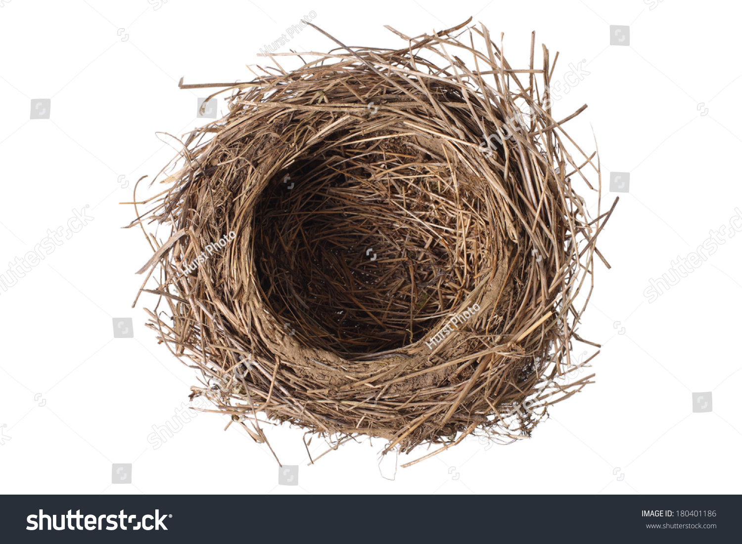 birds nest cut out on white stock photo 180401186 shutterstock