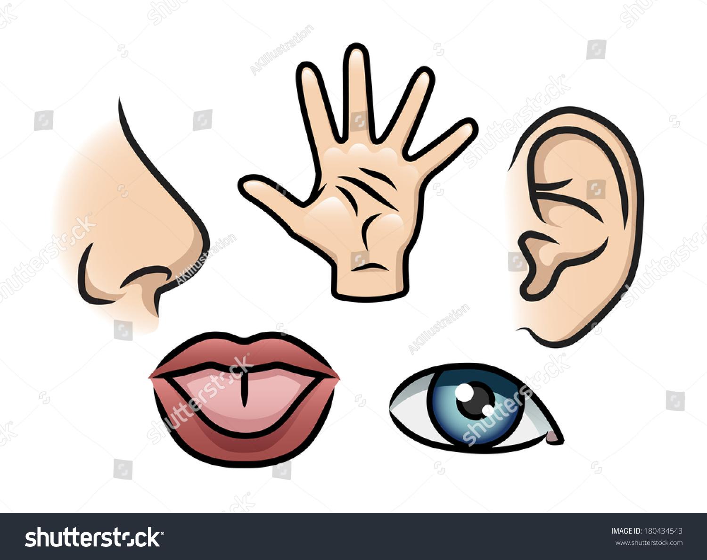 Cartoon Illustration Depicting 5 Senses Smell Stock Illustration 180434543