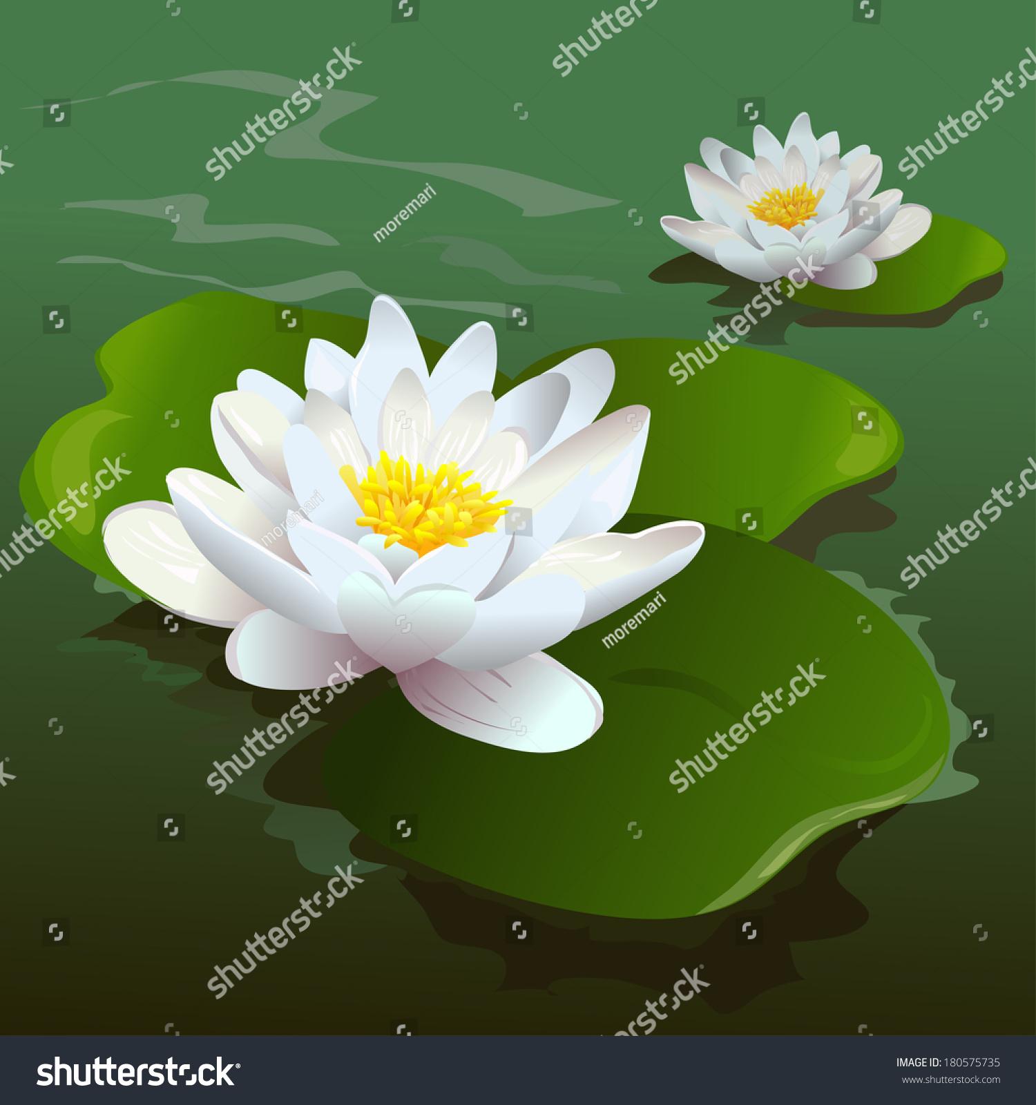 Lotus flower pond vector illustration stock vector 180575735 lotus flower in the pond vector illustration izmirmasajfo Gallery