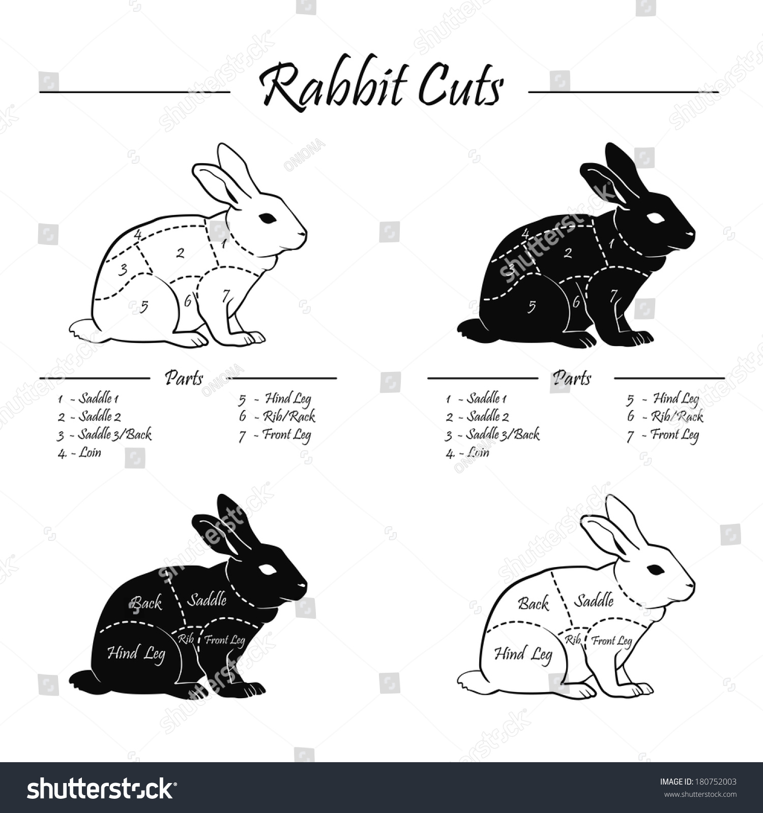Rabbit Cuts Diagram Of A - Auto Wiring Diagram Today •