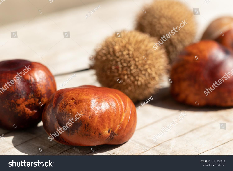 stock-photo-autumn-still-life-fruits-of-