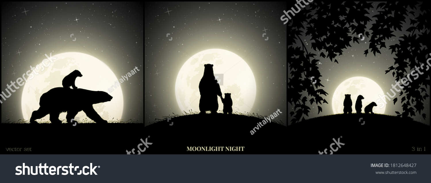 Polar bears family walking in grass on moonlight night. Animal baby silhouette on back of mother. Landscape framed by branches. Full moon in starry sky. Black and white vector illustration set #1812648427