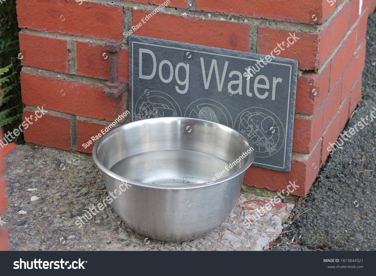 Dog water sign and metal bowl at property entrance