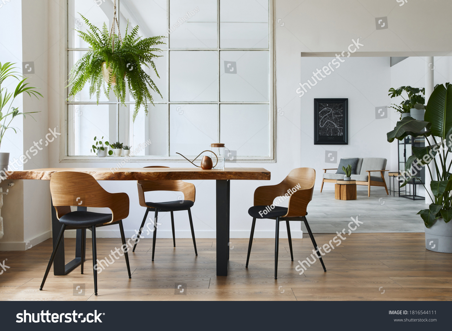 Stylish and botany interior of dining room with design craft wooden table, chairs, a lof of plants, window, poster map and elegant accessories in modern home decor. Template. #1816544111