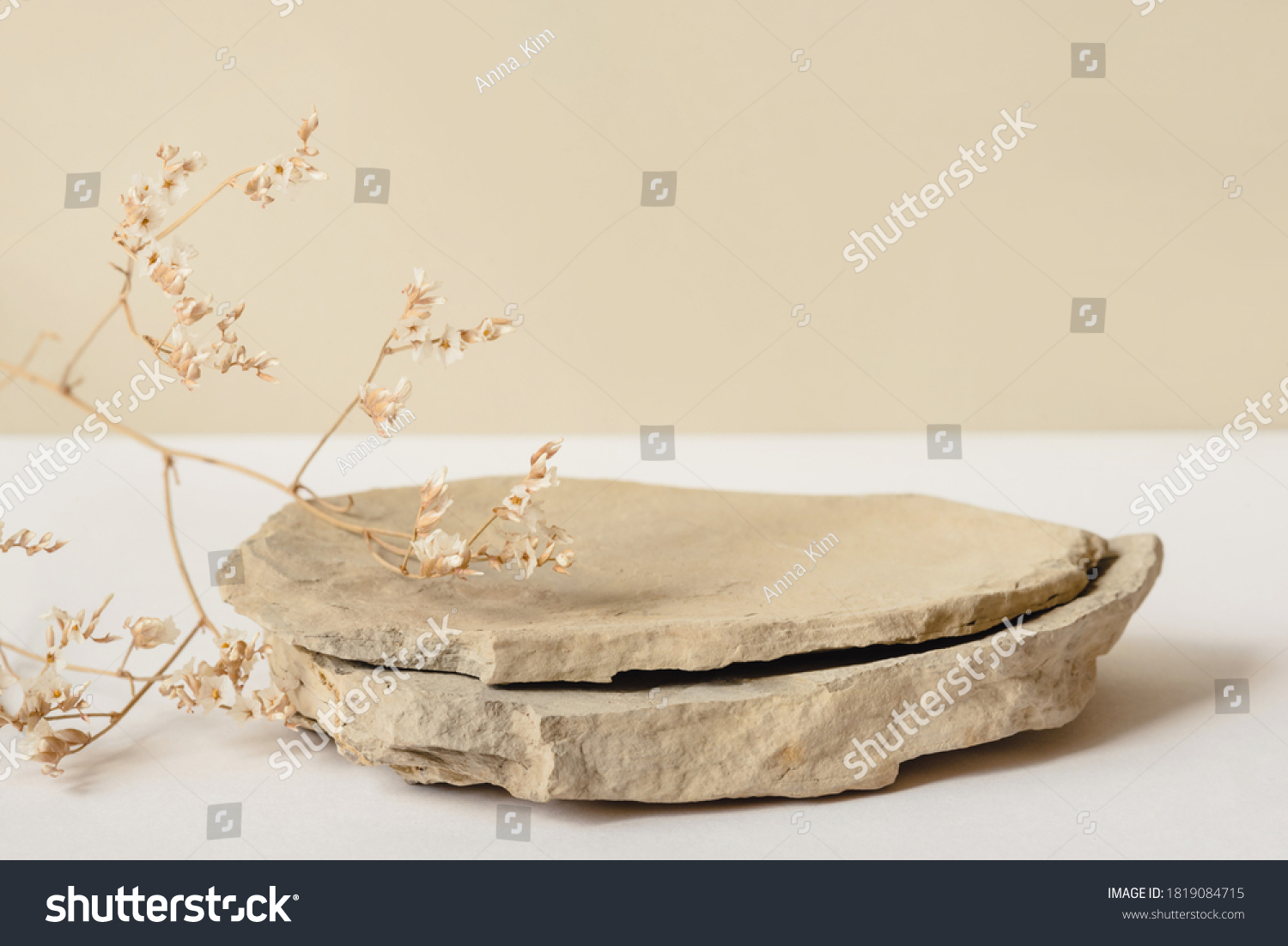 Background for cosmetic products of natural beige color. Stone podium and dry flower on a white background. Front view. #1819084715