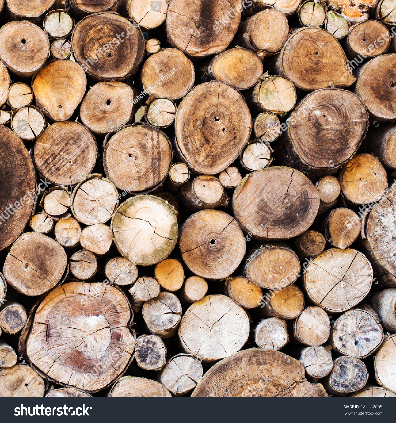 Wood texture background have many logs that cut from big for What to do with tree logs