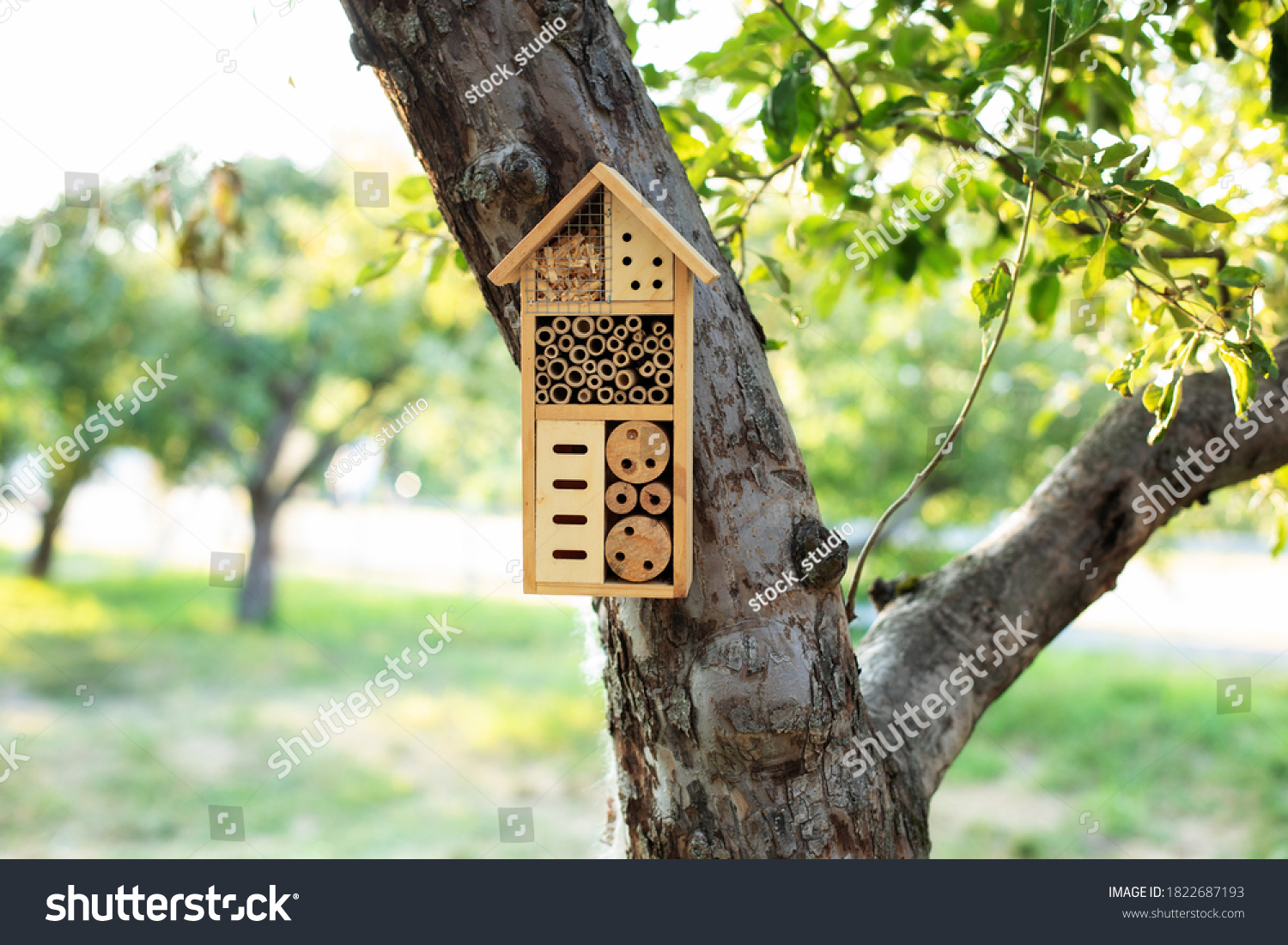 Decorative Insect house with compartments and natural components in a summer garden. Wooden insect house decorative bug hotel, ladybird and bee home for butterfly hibernation and ecological gardening. #1822687193