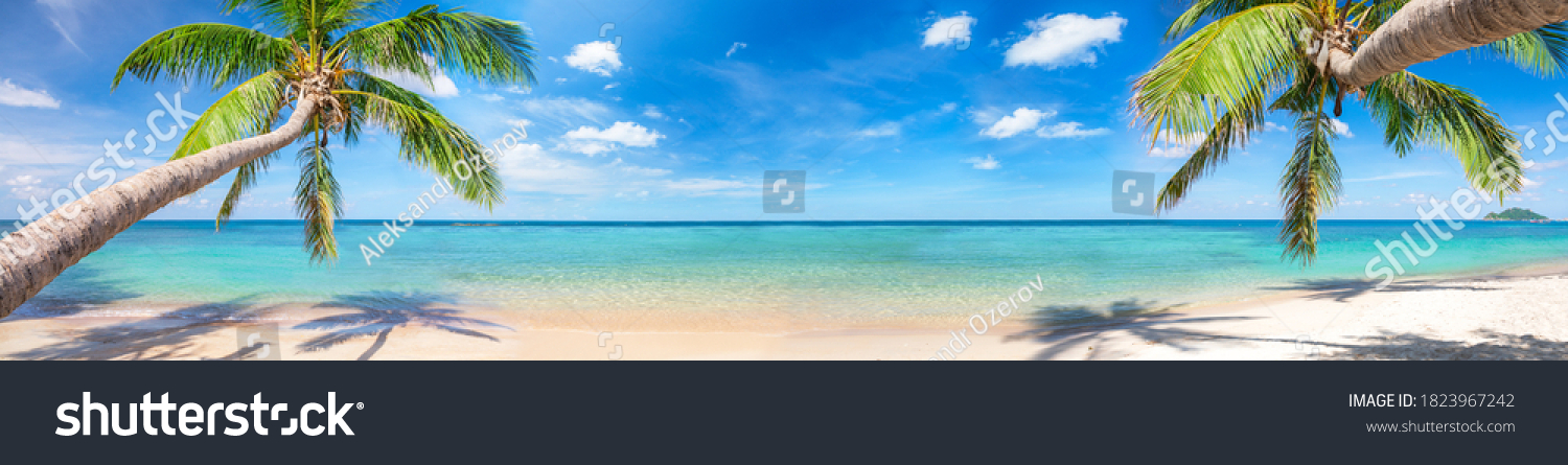 panorama of tropical beach with coconut palm trees #1823967242