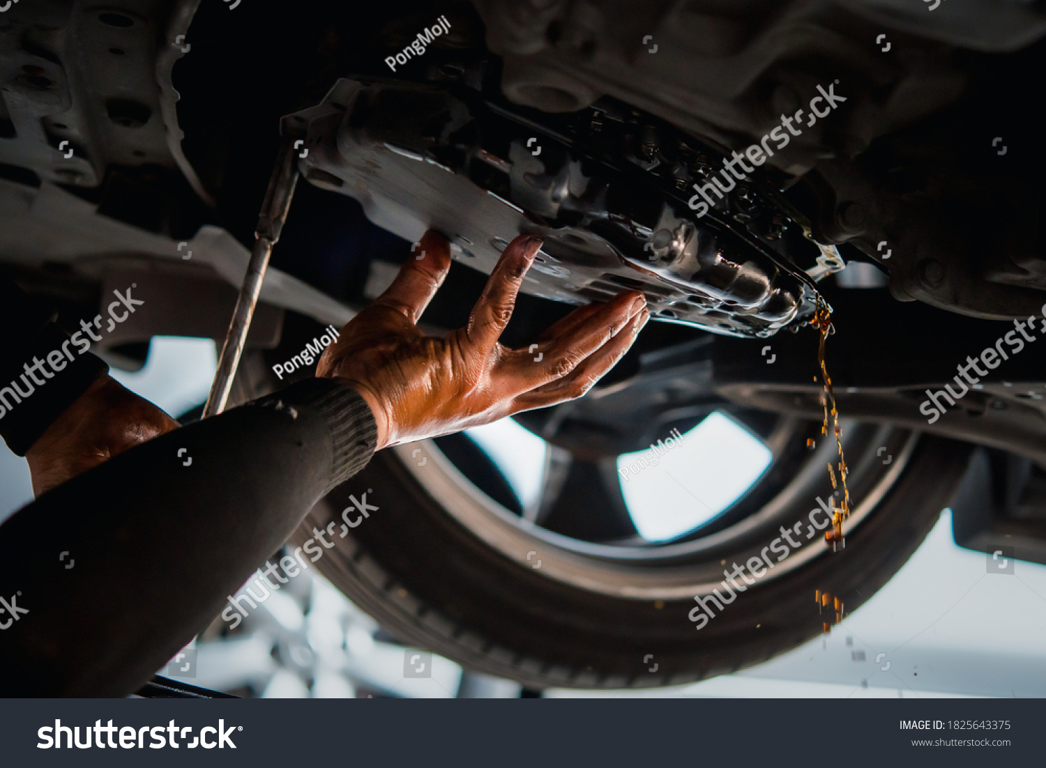 Car mechanic drain the old automatic transmission fluid (ATF) or gear oil at car garage for changing the oil in a gear box of car engine #1825643375