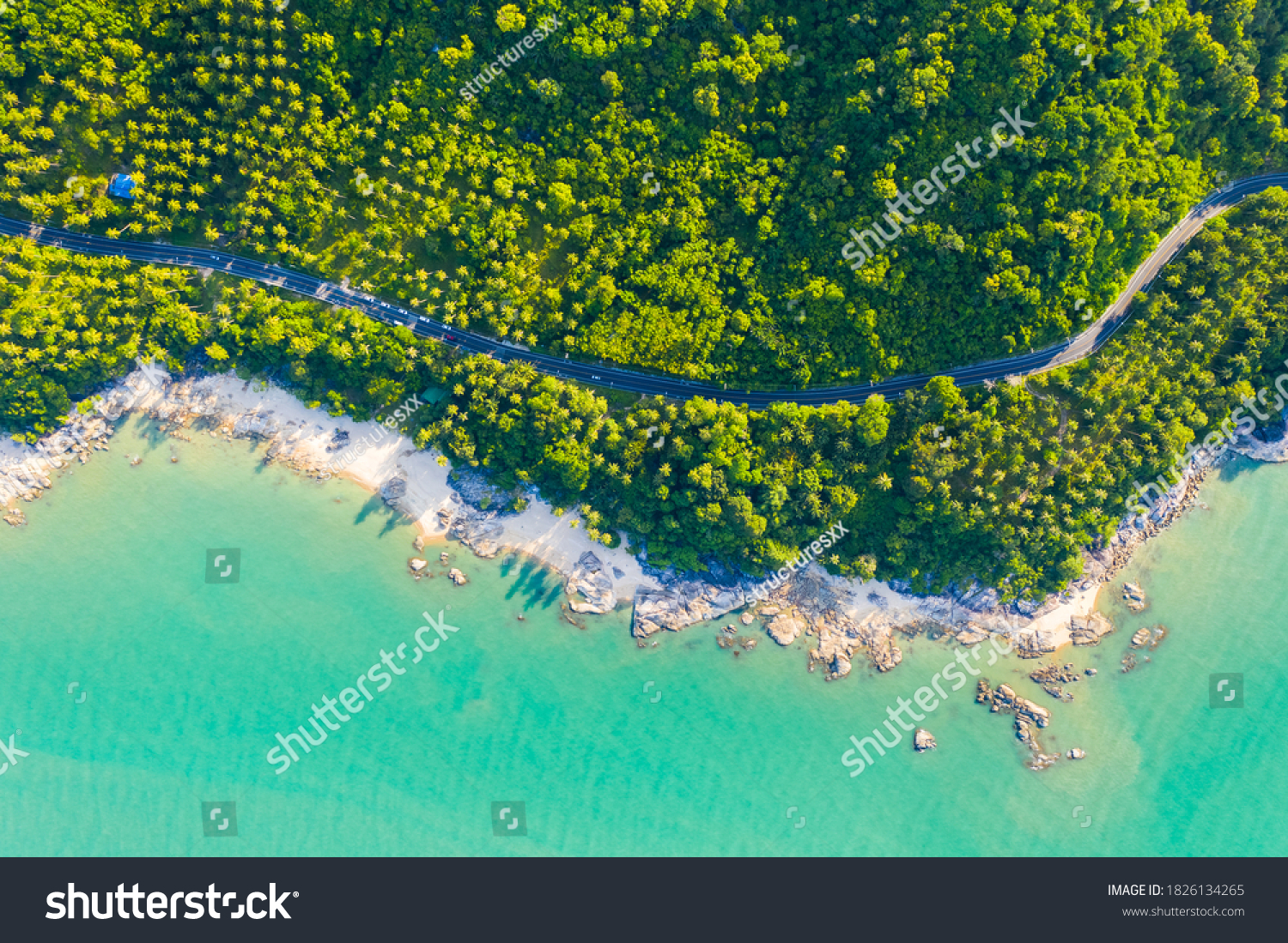 High angle view of  road pass through coconut tree forest and beautiful coastline in Khanom, Nakhon si thammarat, Thailand #1826134265