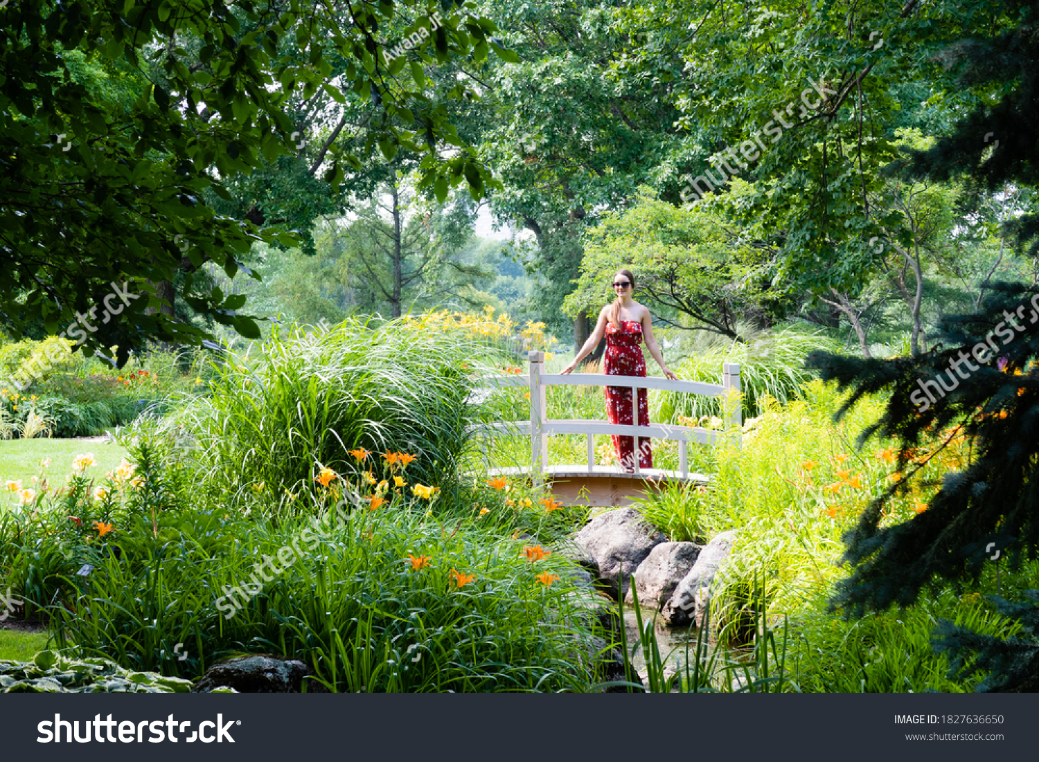 stock-photo-beautiful-view-of-a-young-wo
