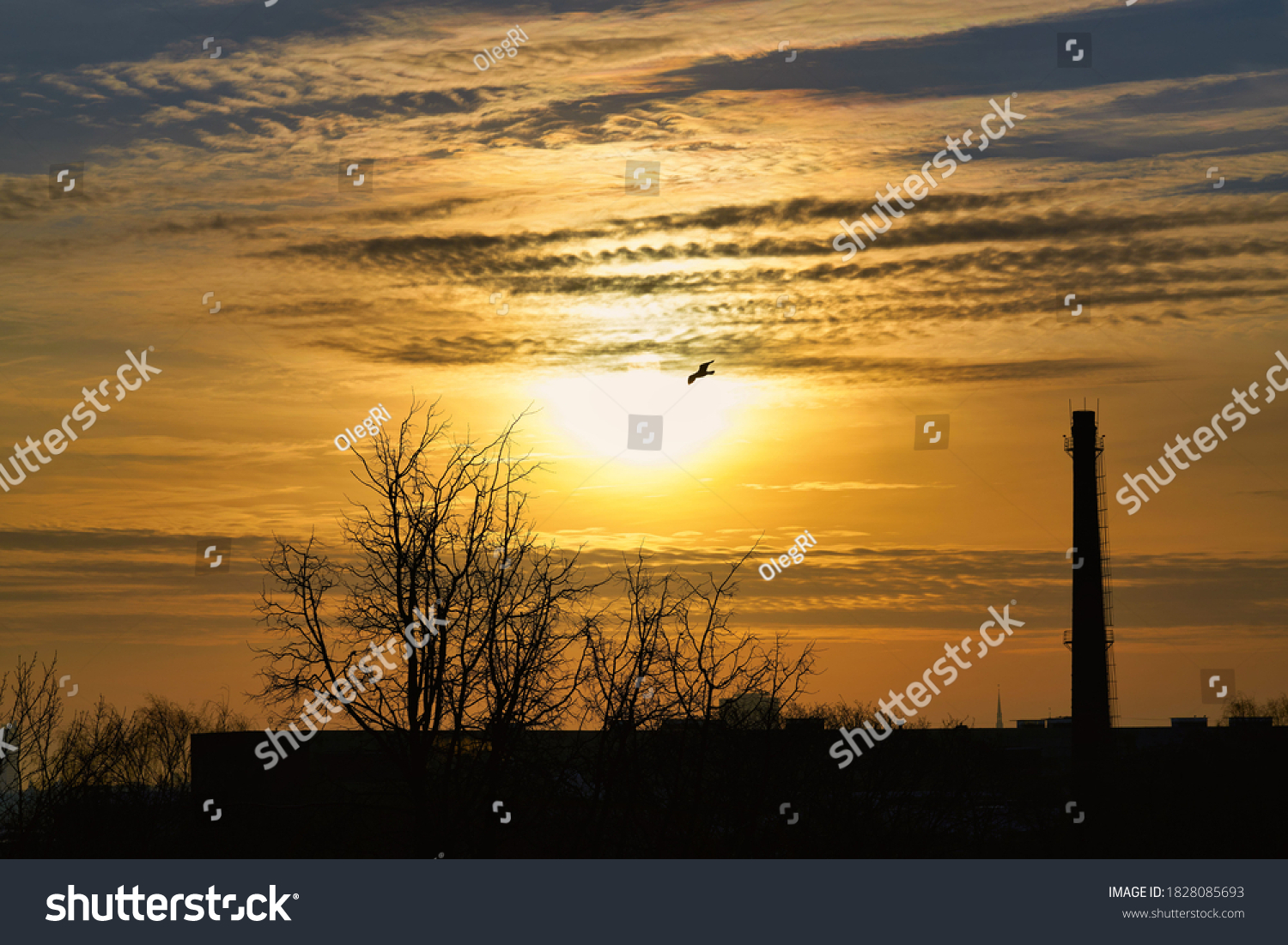 Gorgeous panorama scenic of the strong sunrise with silver lining and cloud on the orange sky. #1828085693