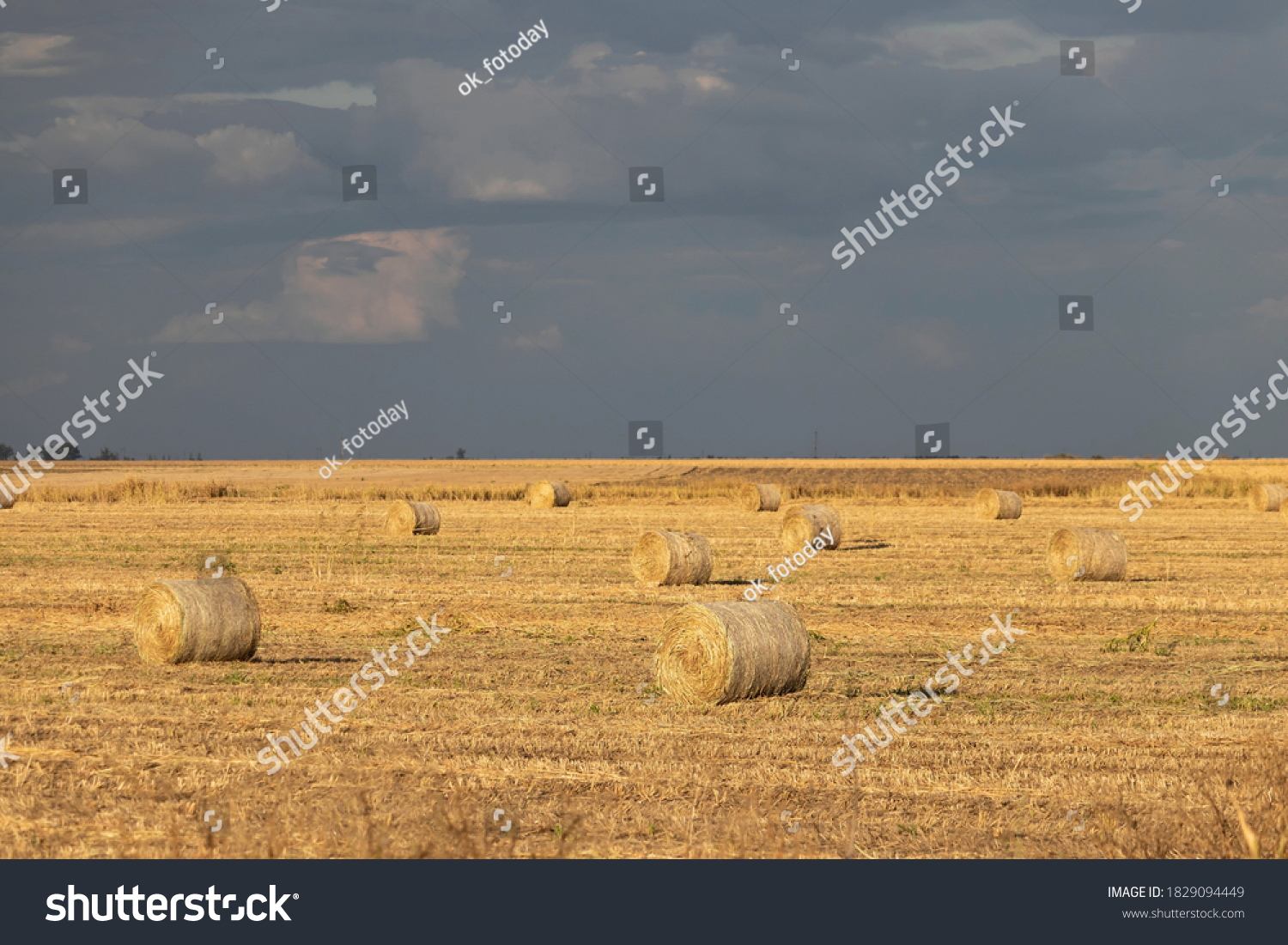 A warm autumn evening: an agricultural field with dry grass and rolls of hay against a cloudy evening sky