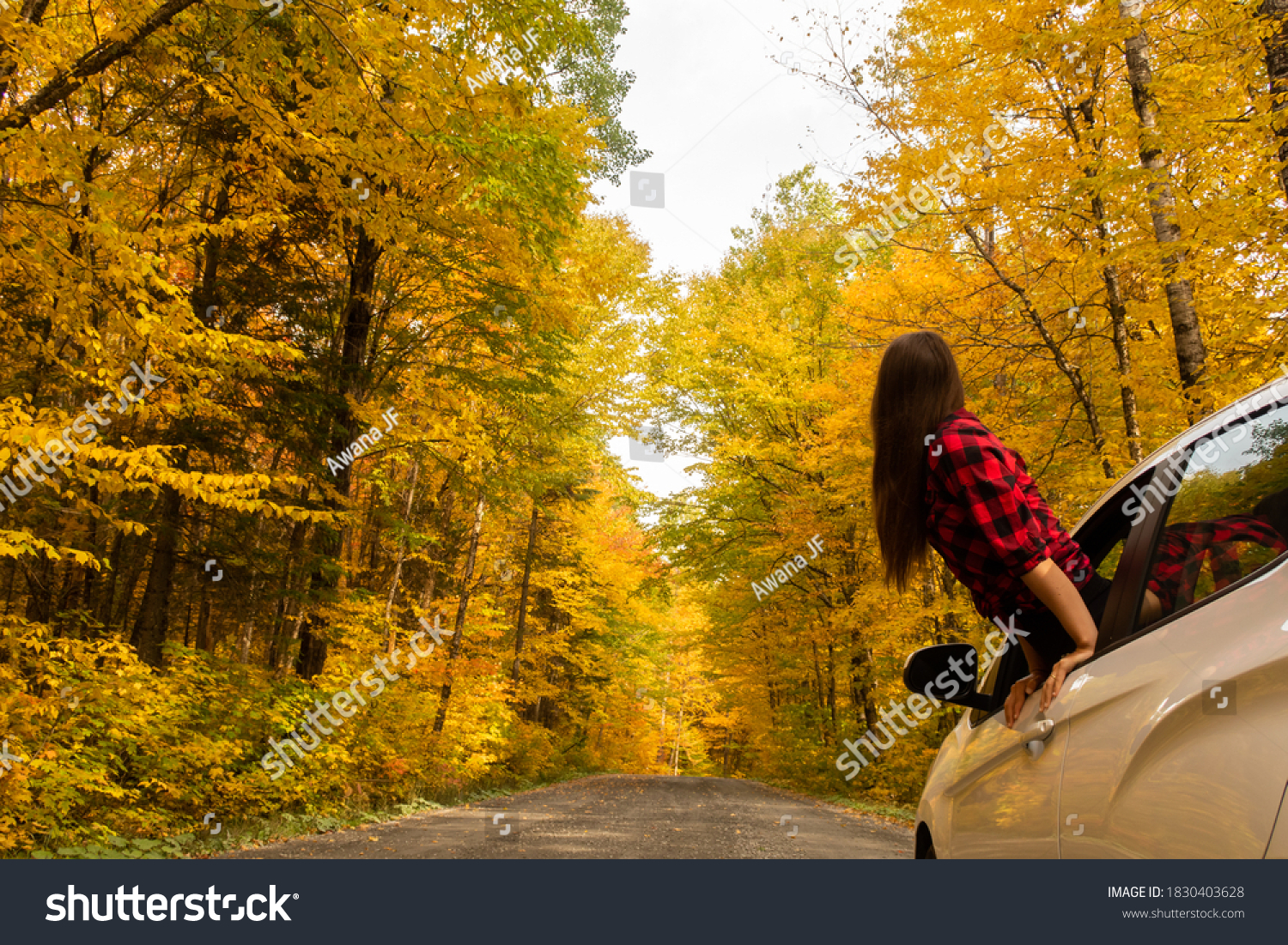 stock-photo-young-woman-hanging-out-of-a