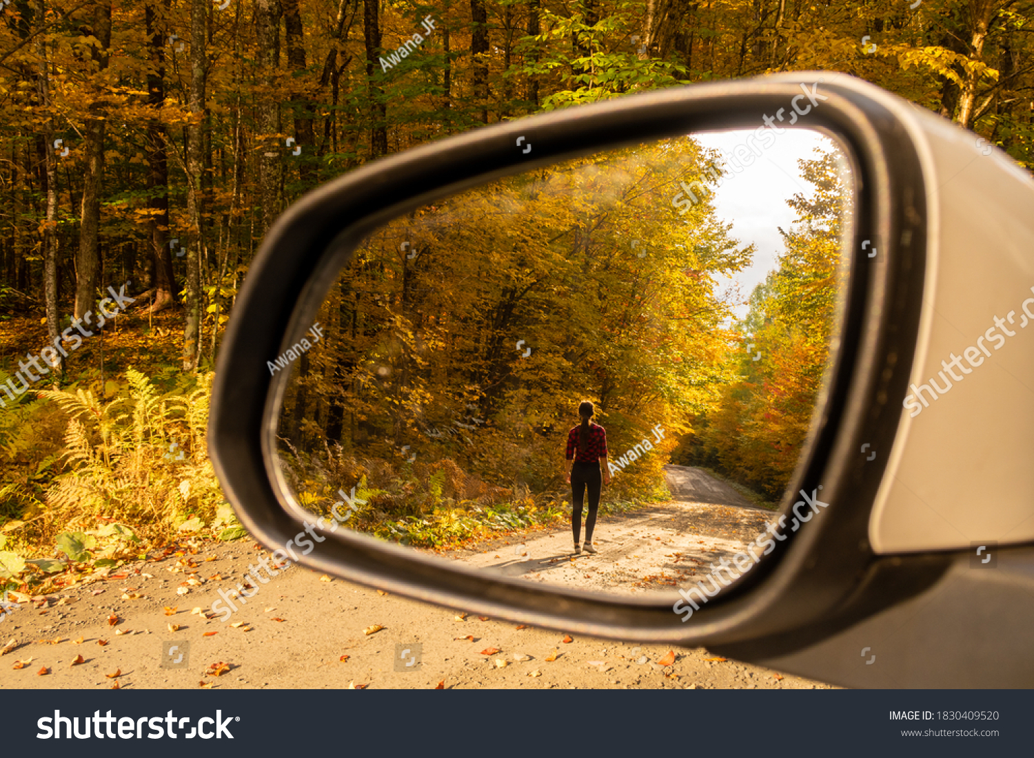 stock-photo-wing-mirror-reflecting-a-wom