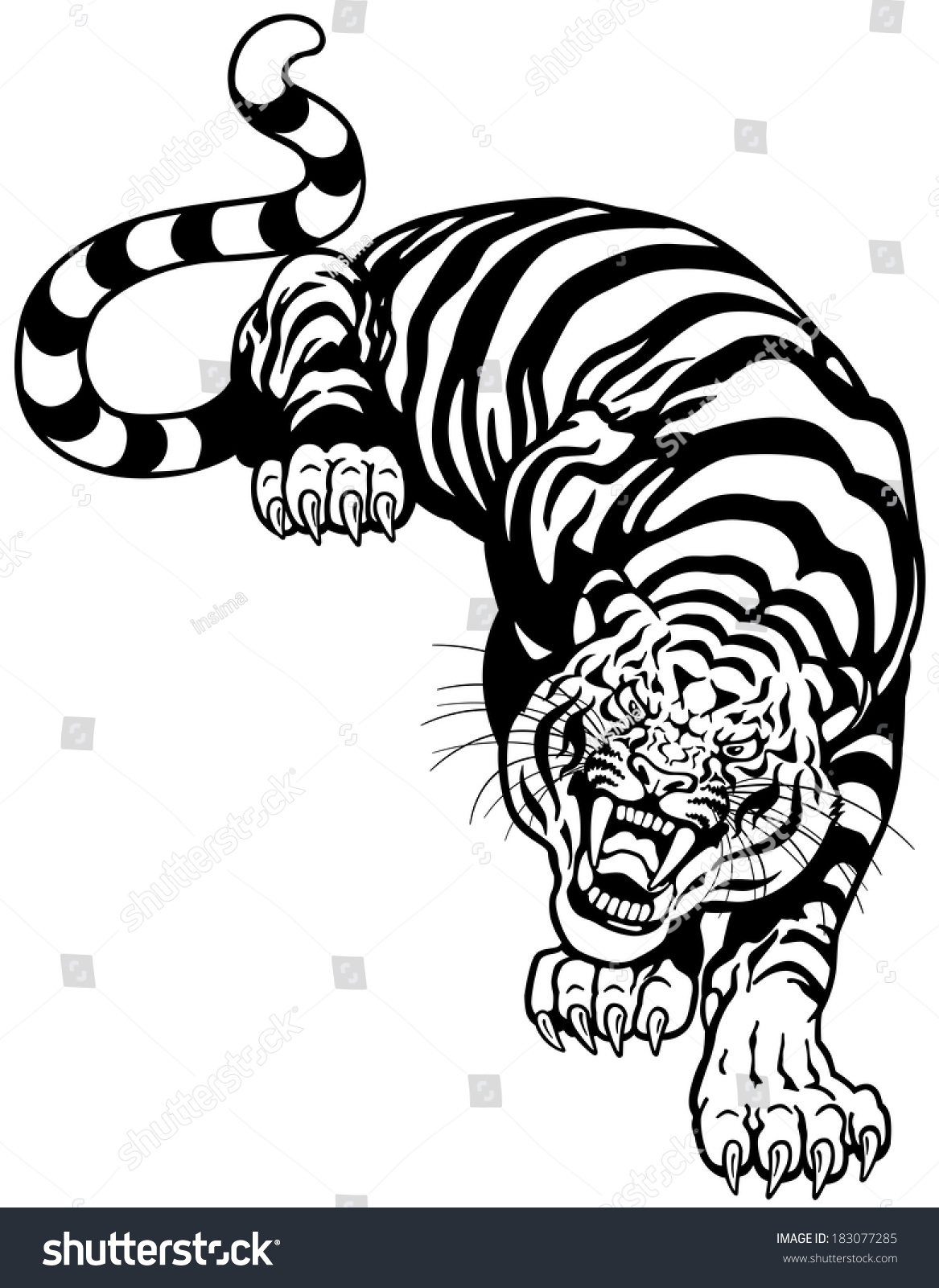 Angry Tiger Black White Tattoo Illustration Stock Vector ...