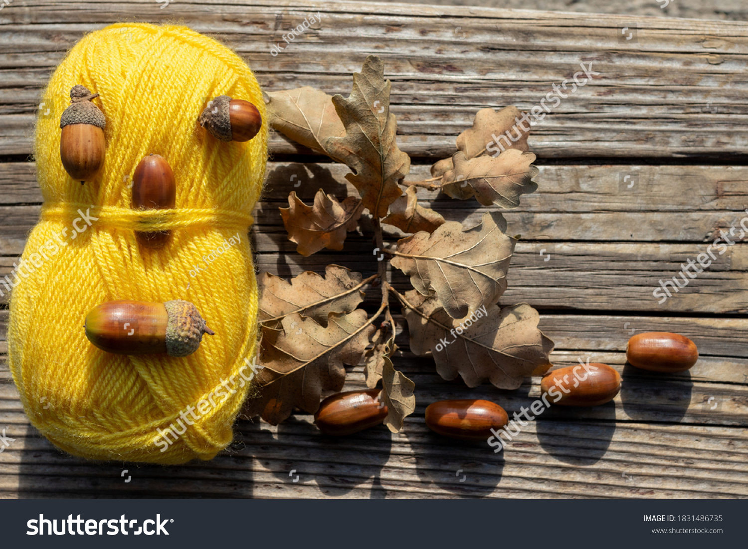 Autumn plot: a skein of yellow knitting thread and ripe acorns with oak leaves on a wooden board