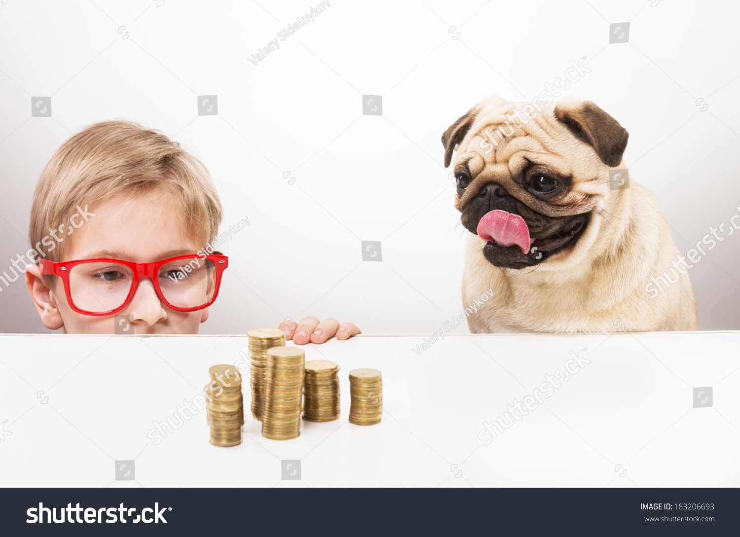 Funny Boy His Dog Looking Over Stock Photo Shutterstock - Dogs looking funny with toys