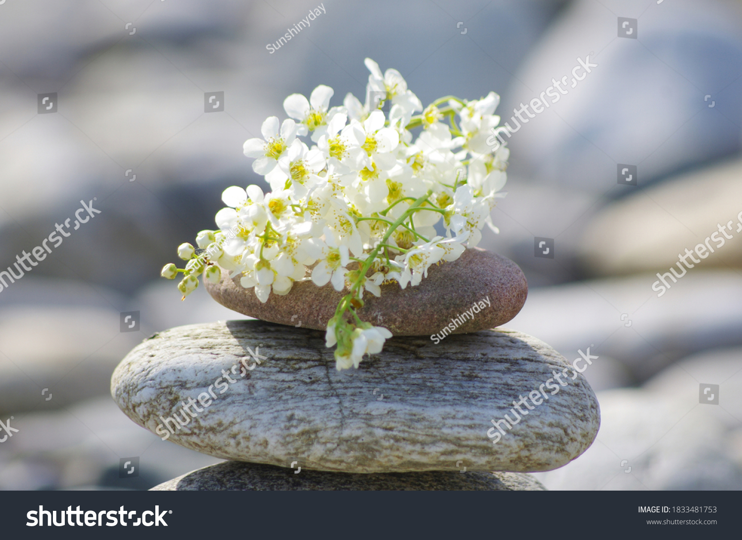 Pile of stones with flowers in the sun