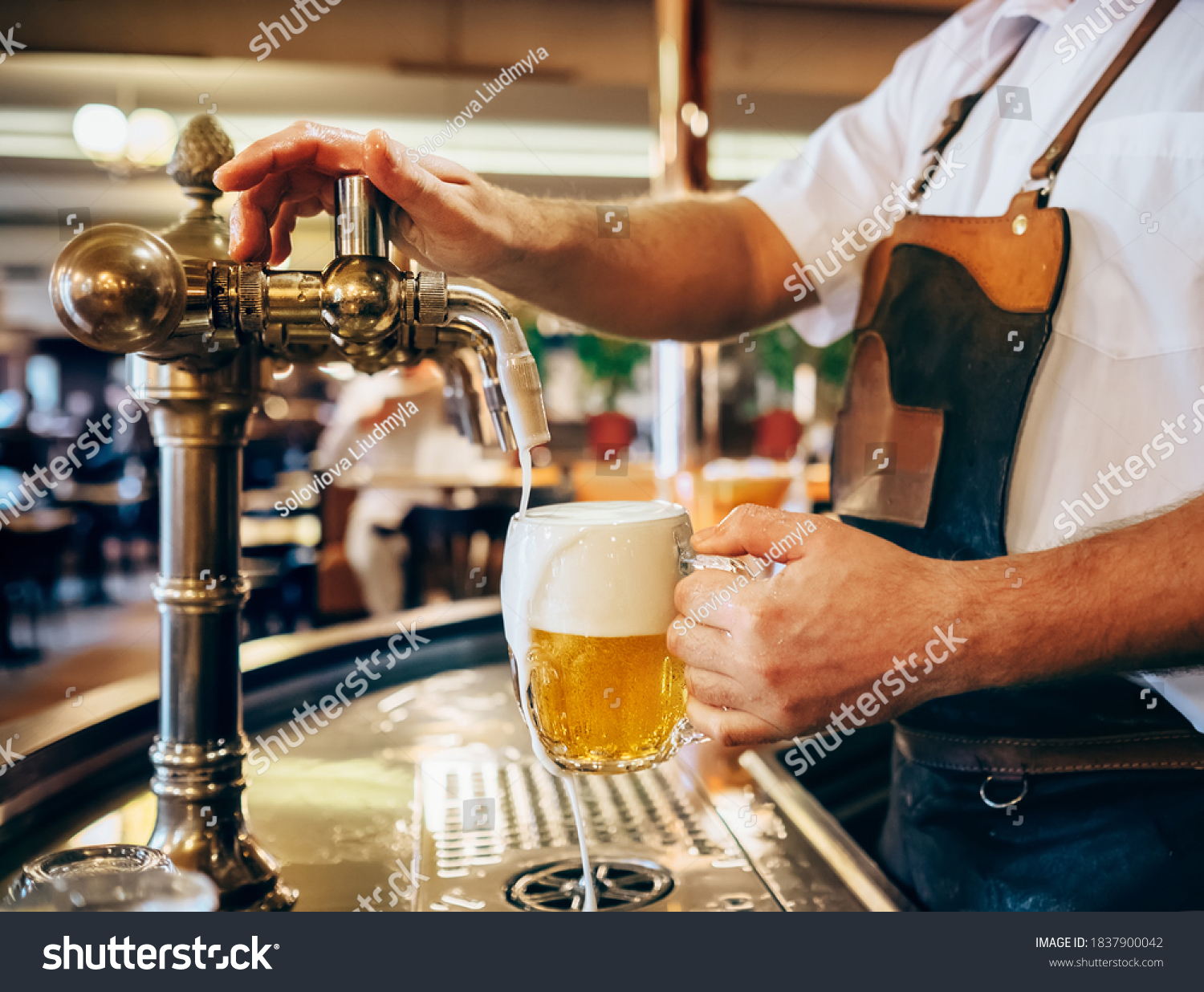 Bartender pouring the fresh beer in one of Czech traditional pubs #1837900042