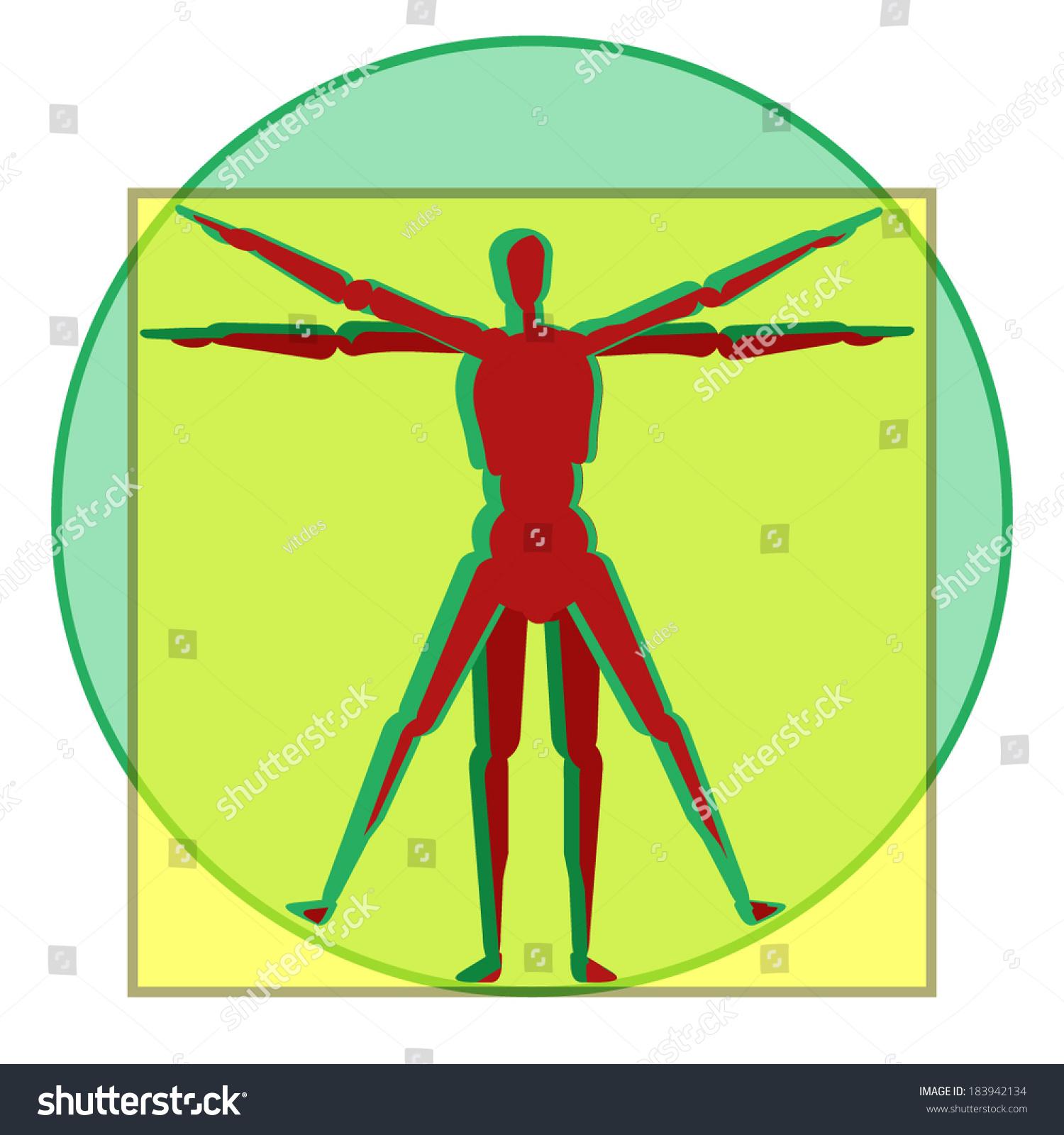 Vetruvian Human Anatomy Men Study Leonardo Stock Vector Royalty