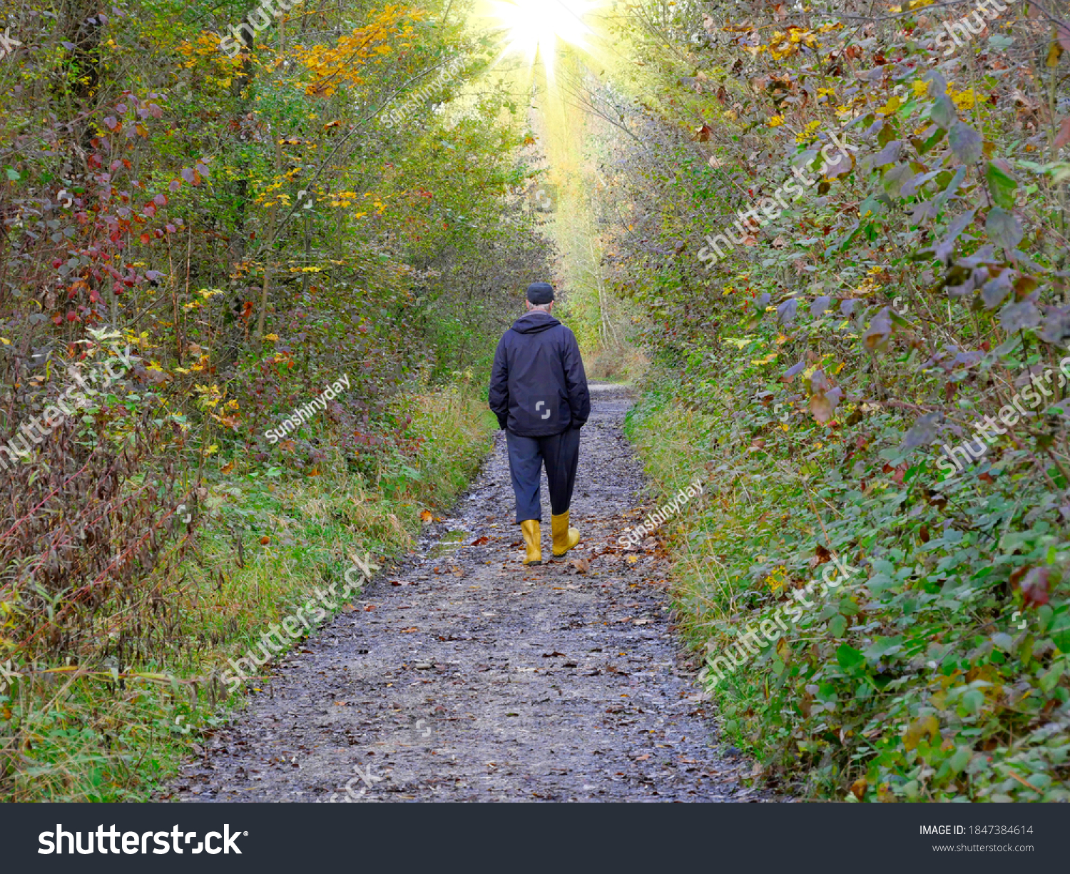 Man walks alone on a forest path towards a light