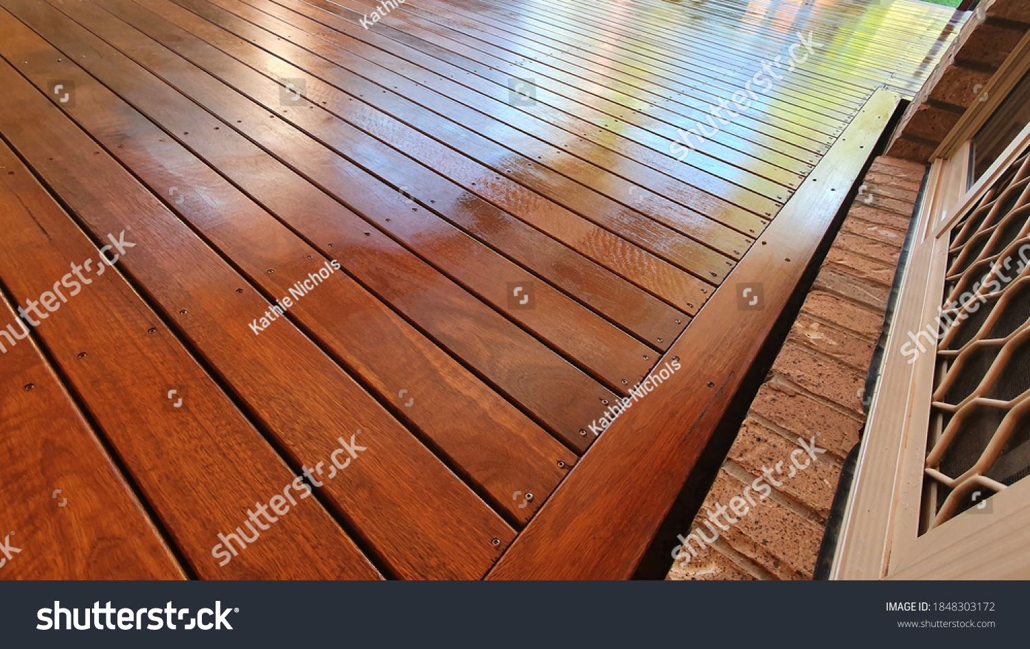 Freshly oiled Australian spotted Gum timber outdoor covered deck with Merbau stain at Residential Home, still wet and yet to dry #1848303172