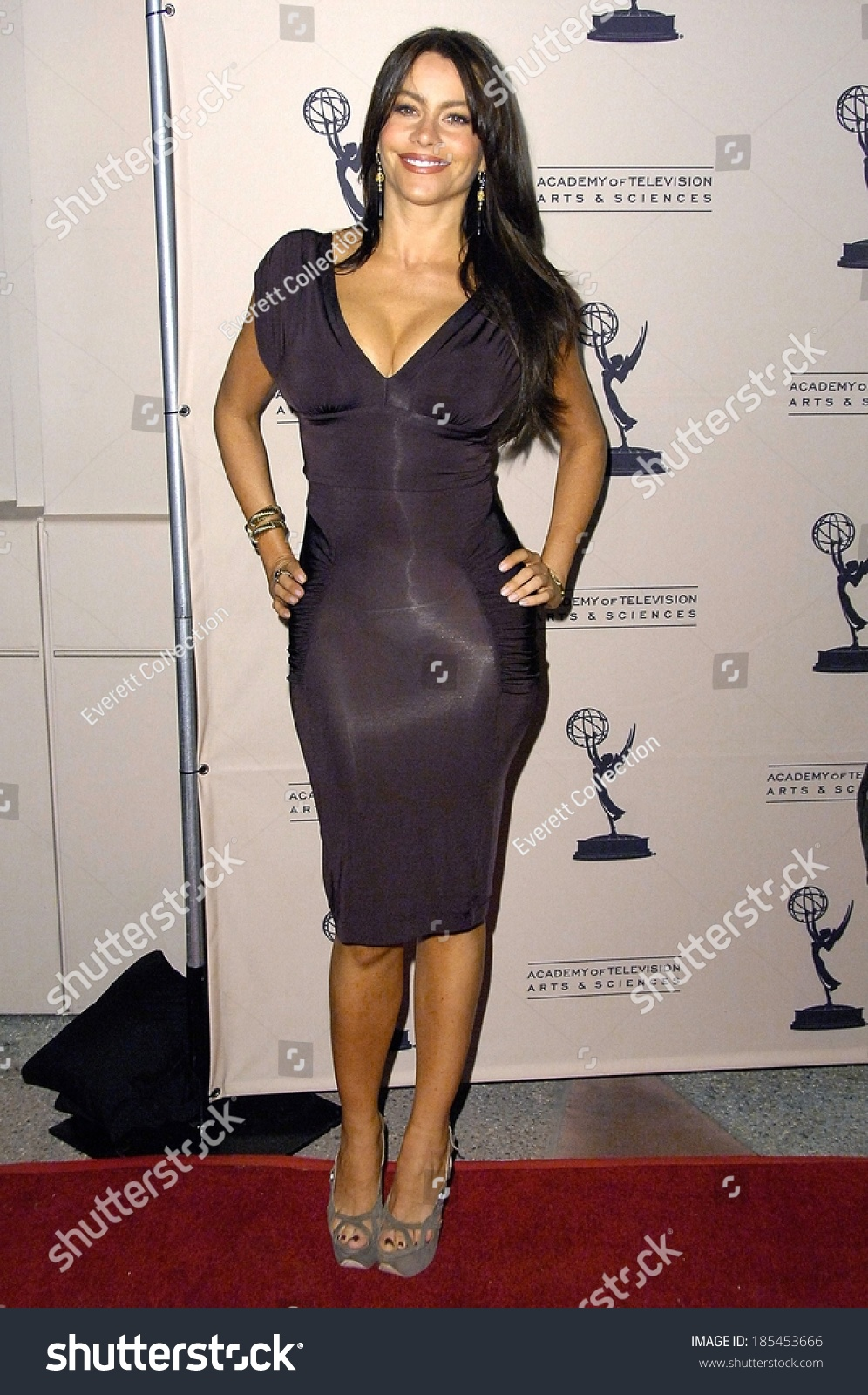 Image Result For Television Academy Official Site