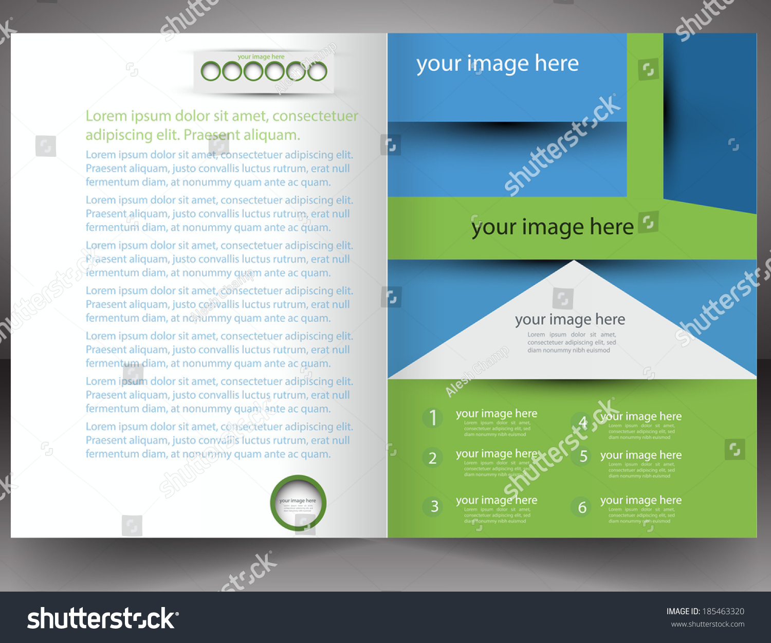 professional business flyer template brochure 185463320 larastock professional business flyer template brochure