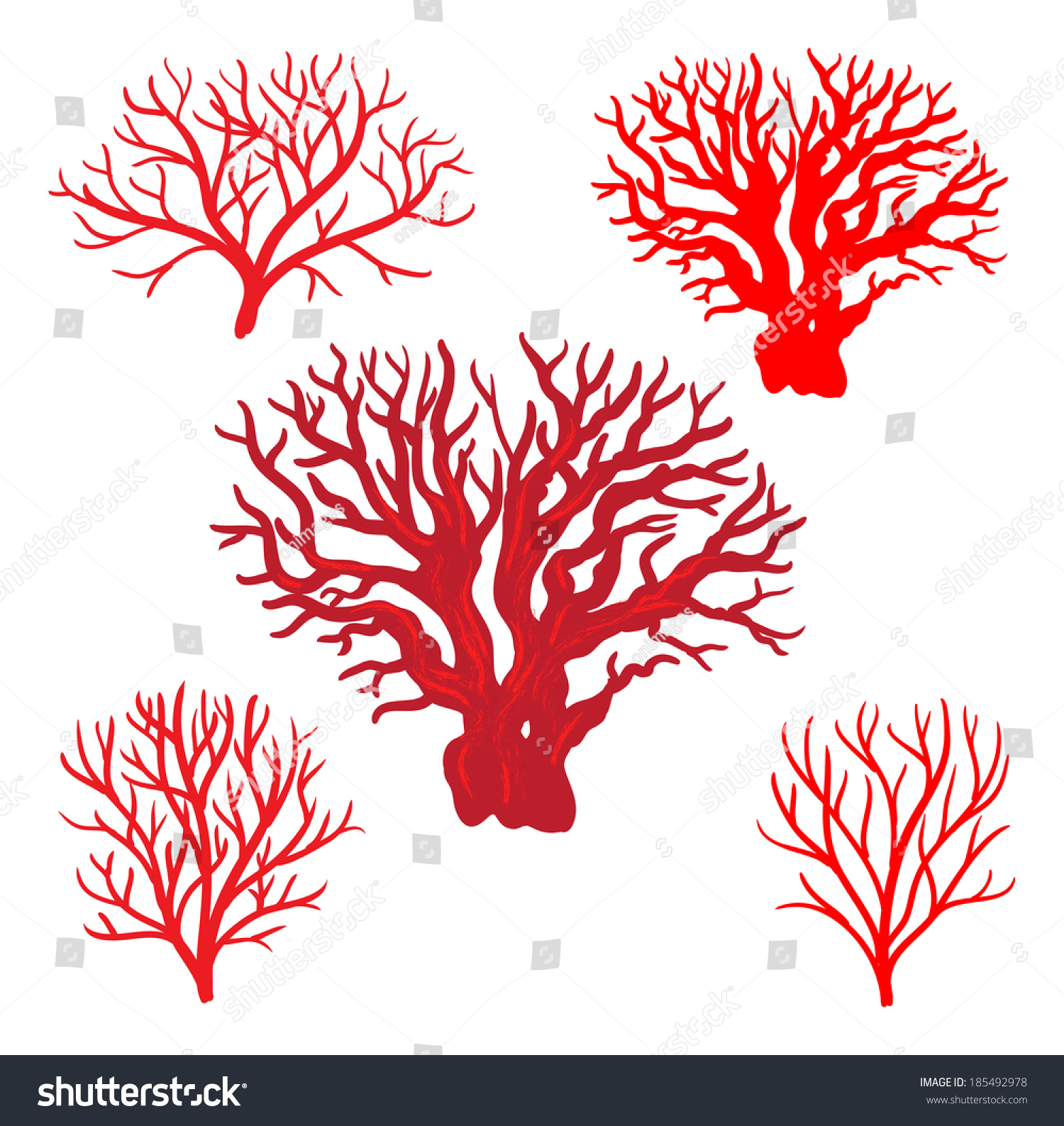 Red Corals Stock Vector 185492978 - Shutterstock