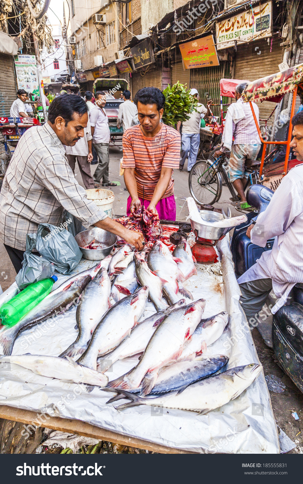 New delhi india october 17 selling fish on fish market for Phil s fish market eatery