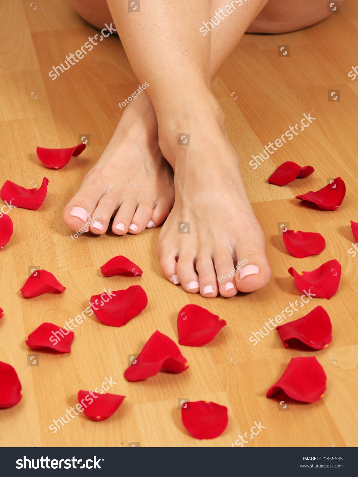 Feet Red Rose Petals Stock Photo (Edit