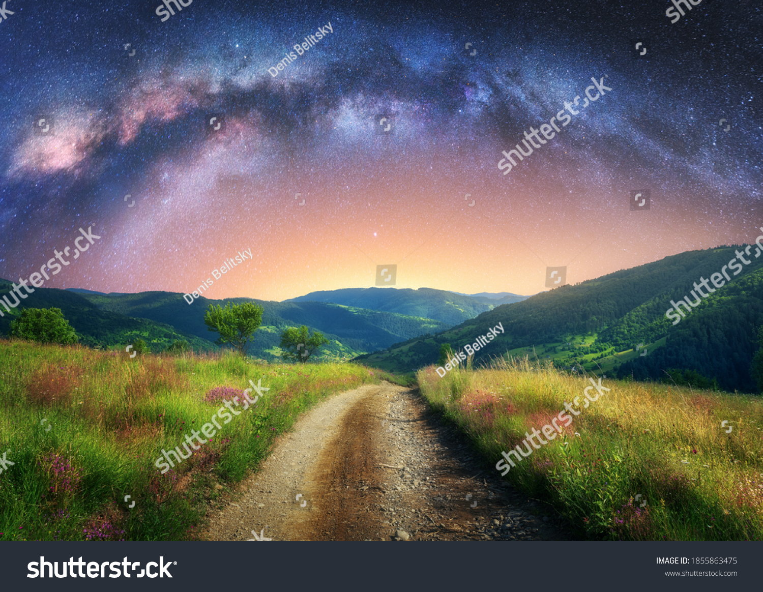 Arched Milky Way over the mountain dirt road in summer. Beautiful night landscape with starry sky, milky way arch, trail in mountain village, hills, green grass and purple flowers. Space and galaxy #1855863475