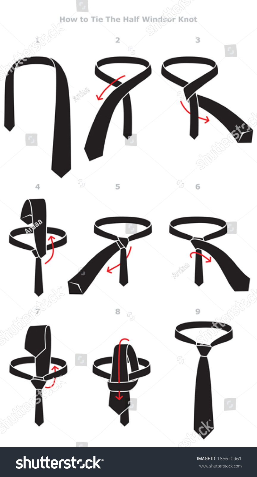 Half Windsor Knot Tying Instructions Stock Vector Royalty Free How To Tie A