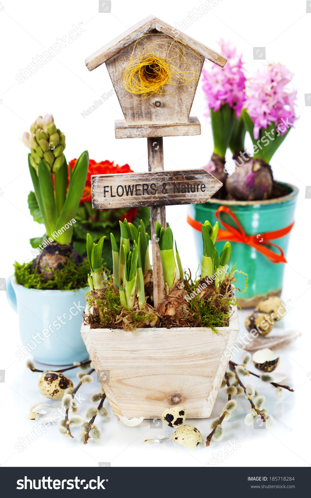 Potted spring flowers little birdhouse over stock photo royalty potted spring flowers and little birdhouse over white spring easter and garden concept mightylinksfo