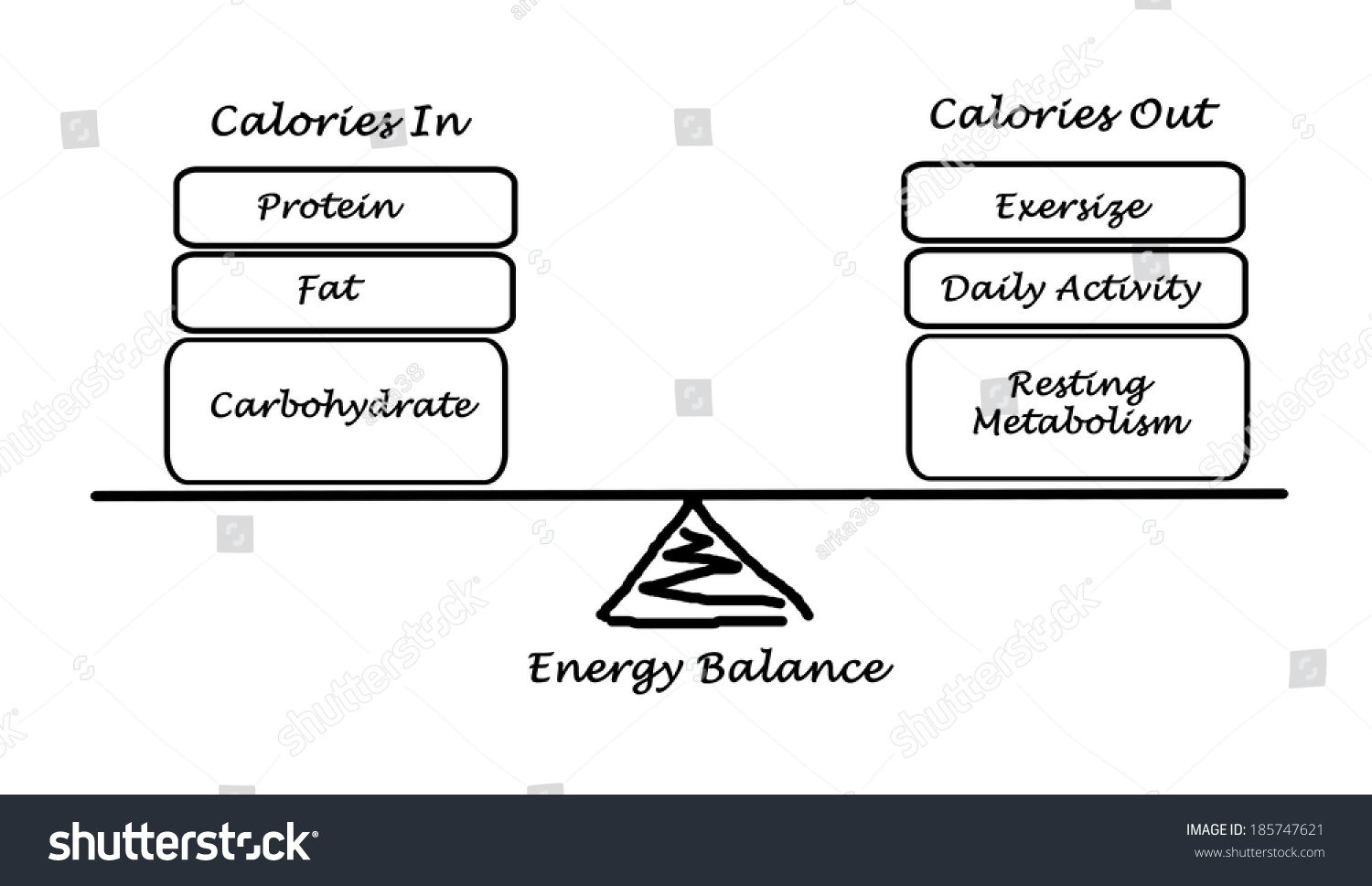 energy expenditure intake and balance Journal of nutrition and metabolism is a peer-reviewed fat gain is always considered to be a result of long-term positive energy balance, whereby daily energy intake exceeds expenditure gender and energy balance.