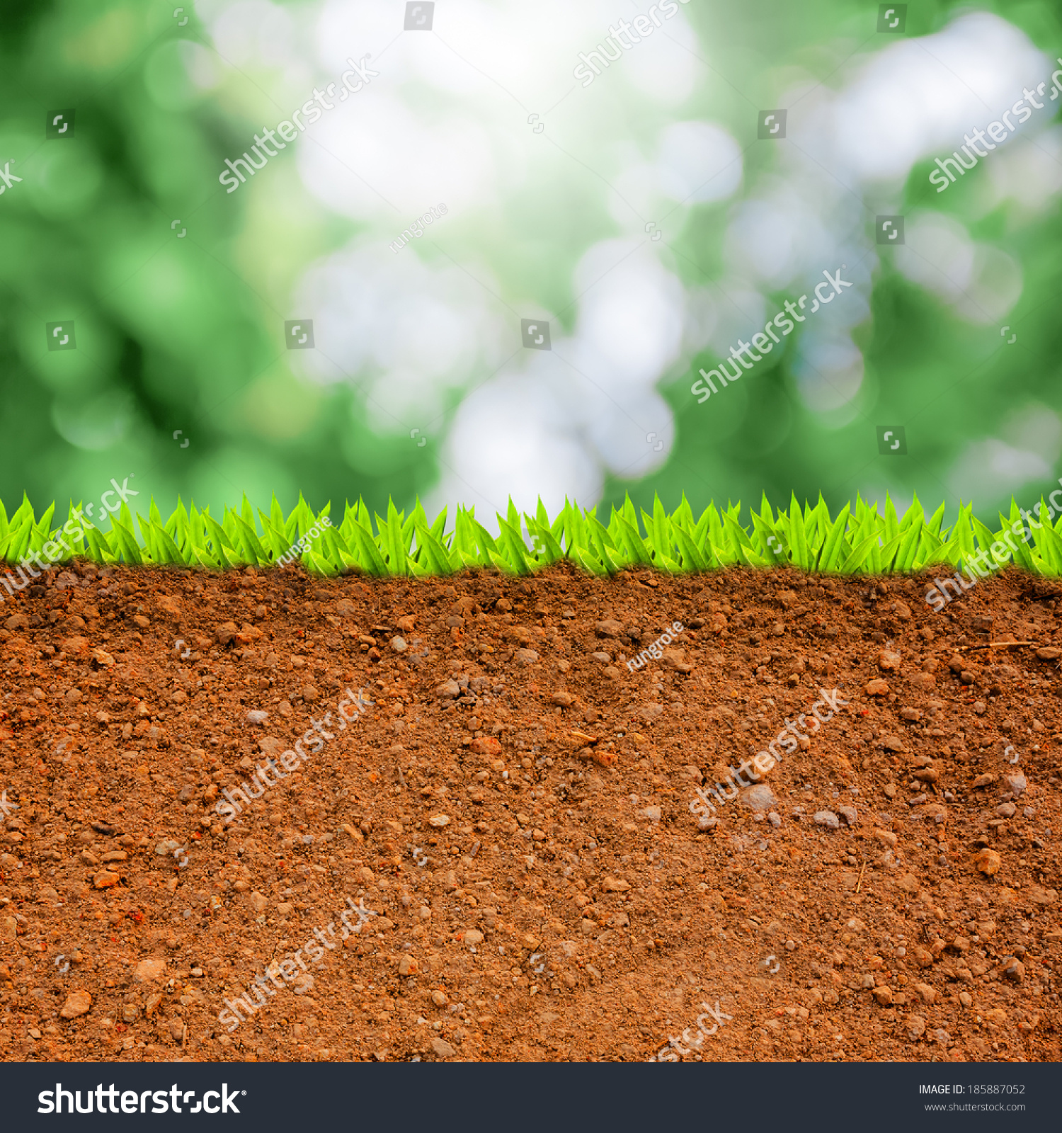 Cross Section Of Grass And Soil Against… Stock Photo