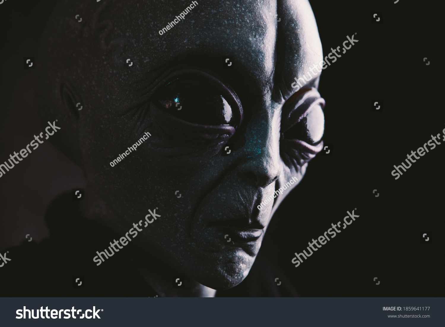 Alien creature has a message for humans. Grey kind humanoid from an other planet portrait series. #1859641177