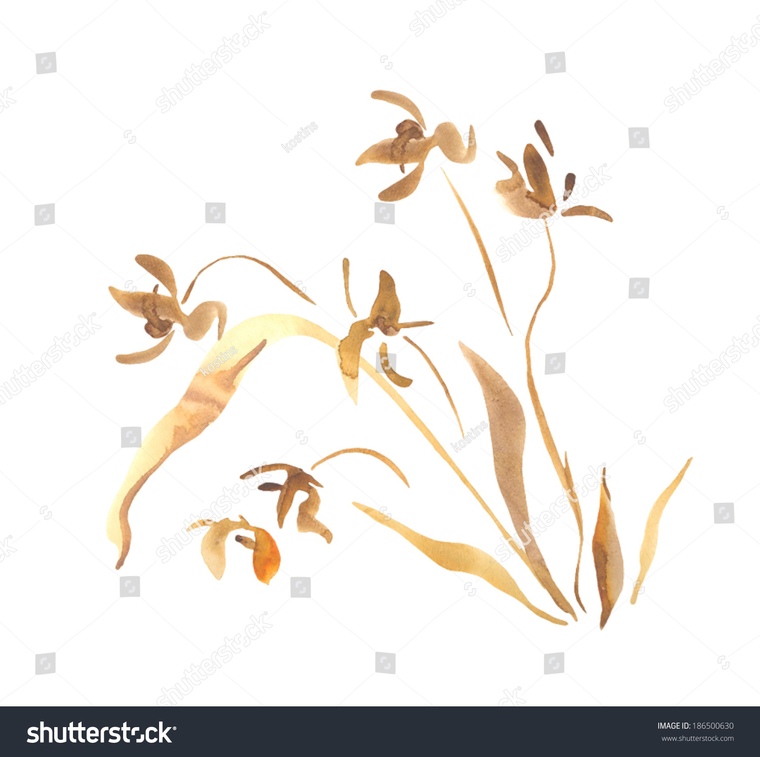 Painter Decorator Sign Stock Vector: Wild Orchid Flower Watercolor Painting Decorative Stock